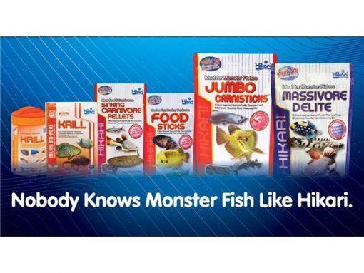 Monster fish Hikari banner