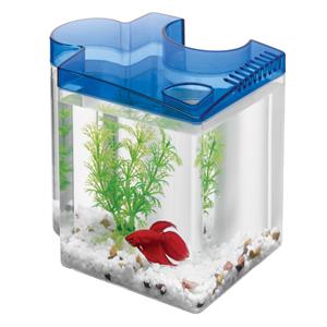 Puzzle Aquarium Blue